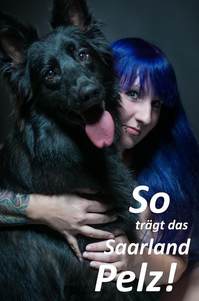 20140915_18-13-21_89704-Bearbeitet