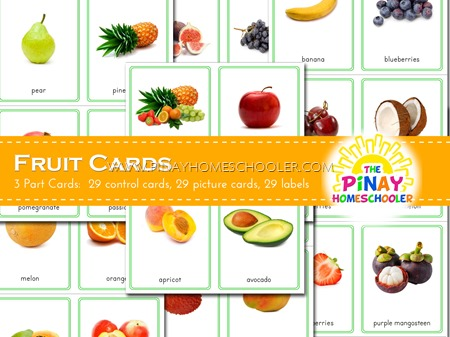 Montessori Fruit 3 Part Cards