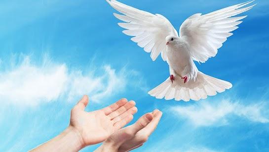 Thánh Thần luôn làm việc trong tâm hồn
