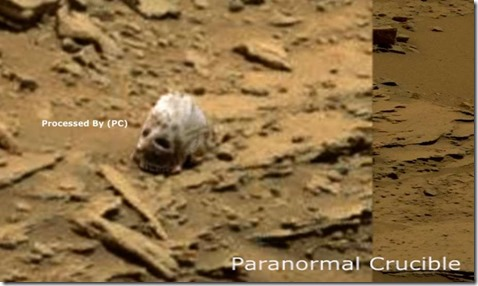 Alien Or Sasquatch Skull Found On Mars