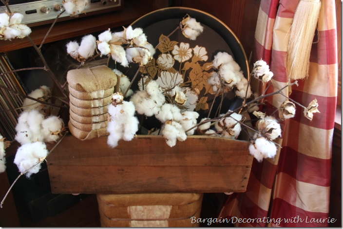 Fall Cotton in Wood Box