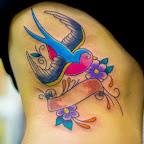 ribs swallow - tattoos ideas