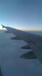 Wizz wing