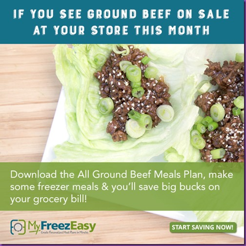 save-ground-beef-600x600_zpszhkxerb7