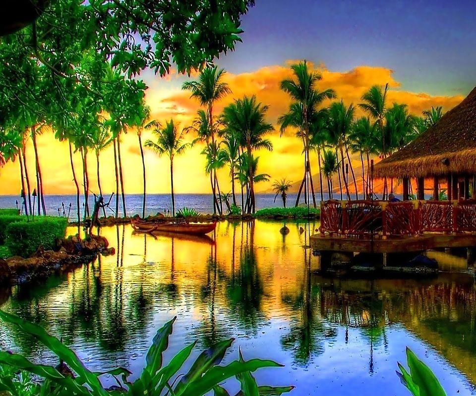 Most Beautiful Tropical Places: Letnje Pozadine!