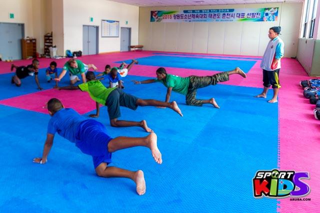 July 18, 2015 Brazil Taekwondo Stichting su team di Train Hard Fight Smart na Korea - Korea%2Bdia%2Bdos%2Bpromer%2Btraining%2BJuli%2B18%252C%2B2015-47.jpg