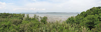 Chek Java Wetlands