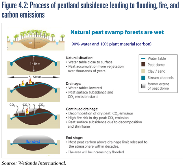 Process of peatland subsidence leading to flooding, fire, and carbon emissions. Graphic: Wetlands International, 2016