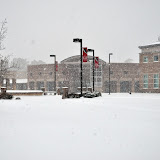 UACCH Snow Day 2011 - DSC_0018.JPG