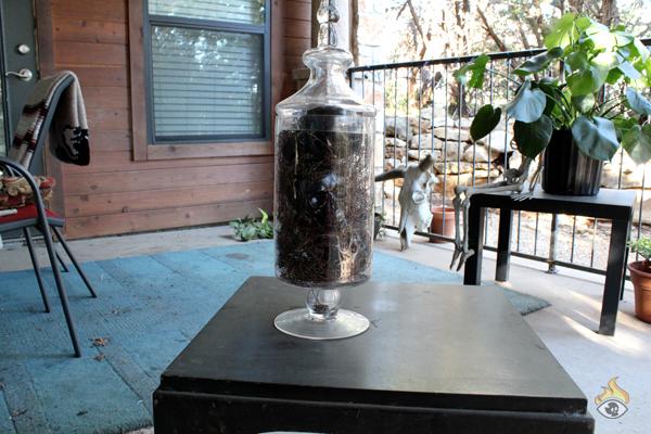 DIY Halloween Decoration Apothecary Jar