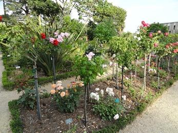 2018.07.01-101 le parc du Thabor (20h00)