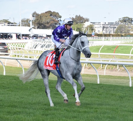 caulfield stakes_d'argento 5