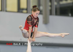 Han Balk Fantastic Gymnastics 2015-2043.jpg