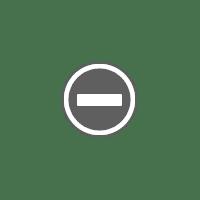 """6"""" qube QAL beaquilter final quilt baby blue"""