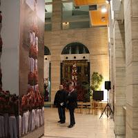 Exposició 15 anys Biblioteca Pública 17-01-11 - 20110117_504_Lleida_Exposicio_15_anys_CdL.jpg