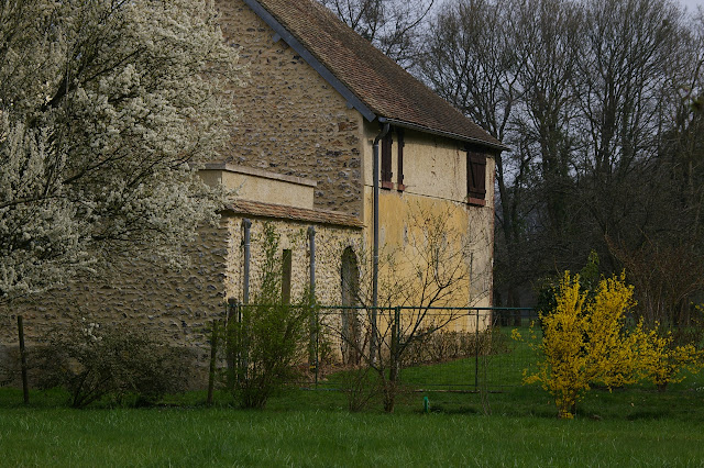 Hautes-Lisières (Rouvres, 28), 25 mars 2011. Photo : J.-M. Gayman