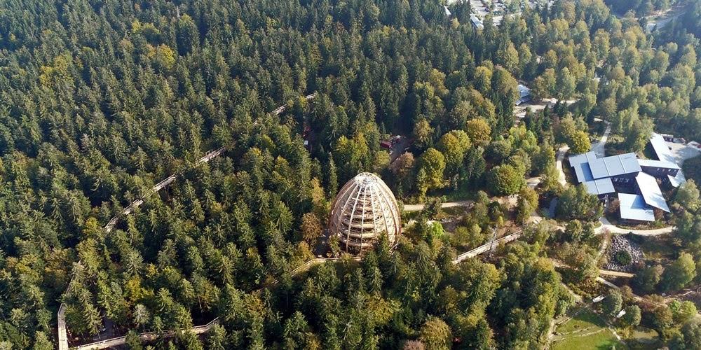Neuschonau, a caminhada mais alta e longa em árvores do mundo