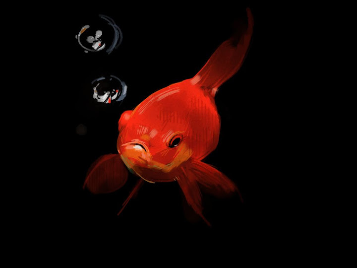 Goldfish made with Sketches