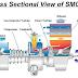 Super marine Gas Turbine (SMGT)