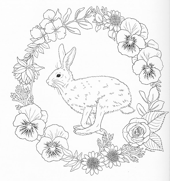 Harmony Of Nature Adult Coloring Book Pg