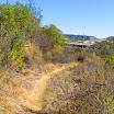 laguna_coast_wilderness_IMG_2251.jpg