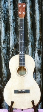 mark mitchel galloway strings tenor guitar baritone ukulele