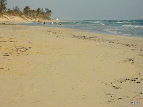 Morje je toplo in valovito.