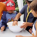 Campaments dEstiu 2010 a la Mola dAmunt - campamentsestiu523.jpg