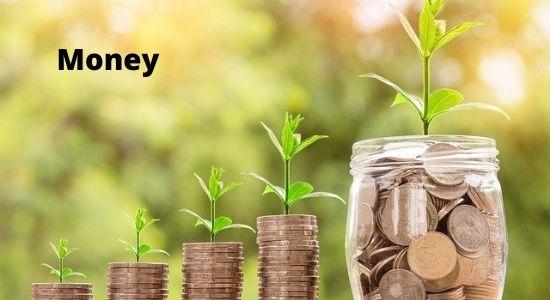 Essay on Money Hindi