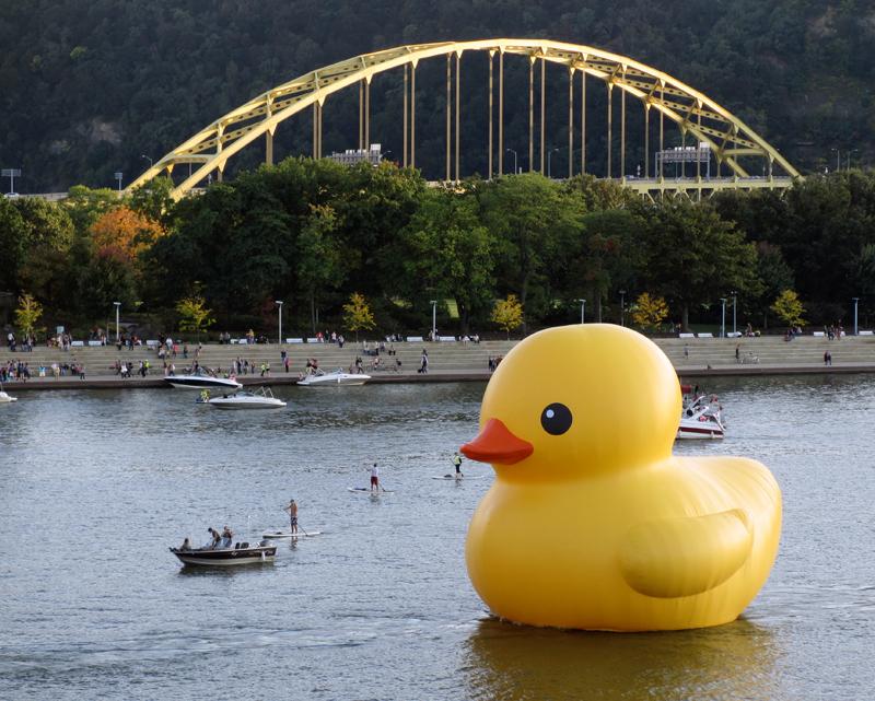 sculpture Rubber Duck Project by Florentijn Hofman Downtown Pittsburgh