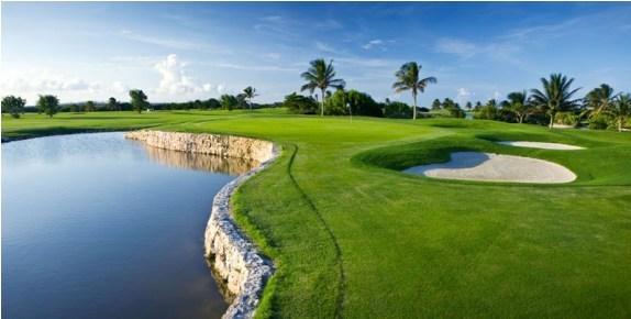 cỏ sân tập golf