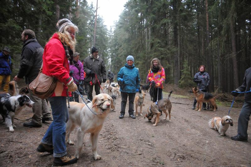 20140101 Neujahrsspaziergang im Waldnaabtal - DSC_9809.JPG