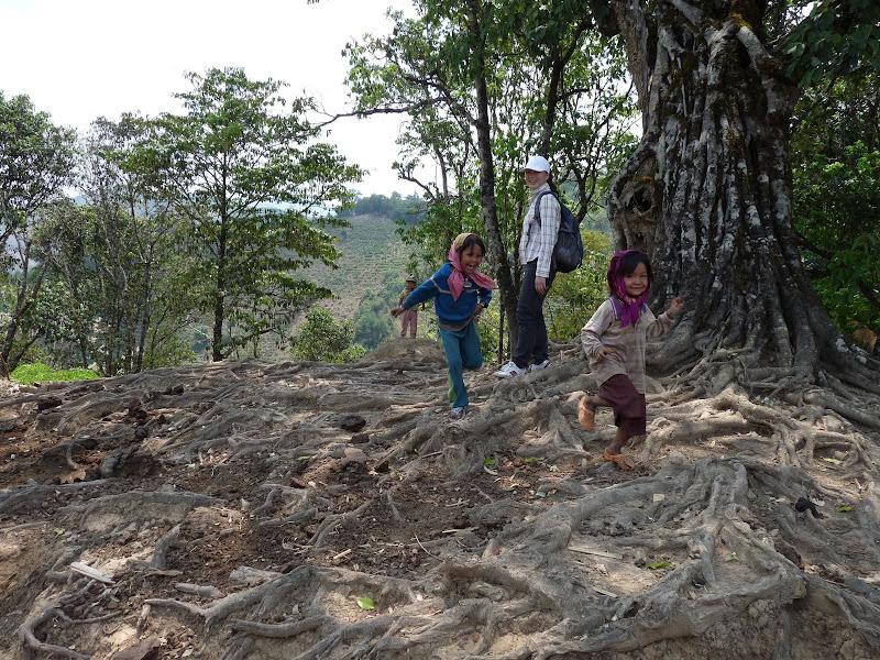 Chine: randonnée xishangbanna, région de Bada - Picture1%2B1012.jpg