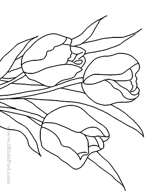 Spring Tulips Flowers Kids Coloring Book
