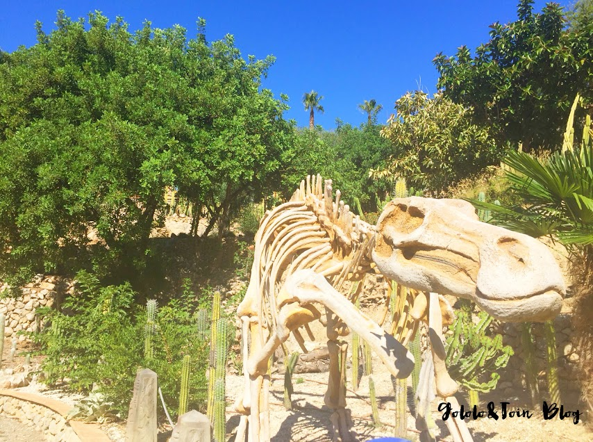 dinopark-algar-valencia-parque-tematico-dinosaurios-excursiones-con-niños