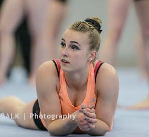Han Balk Fantastic Gymnastics 2015-2403.jpg