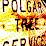Polgar Tree's profile photo