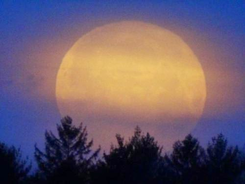 Cold Yule Moon Saturday 6Th December 2014 Moon Phases December