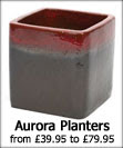Apta Aurora Glazed Planters that are available with a Red, Lime or Aqua Blue finish