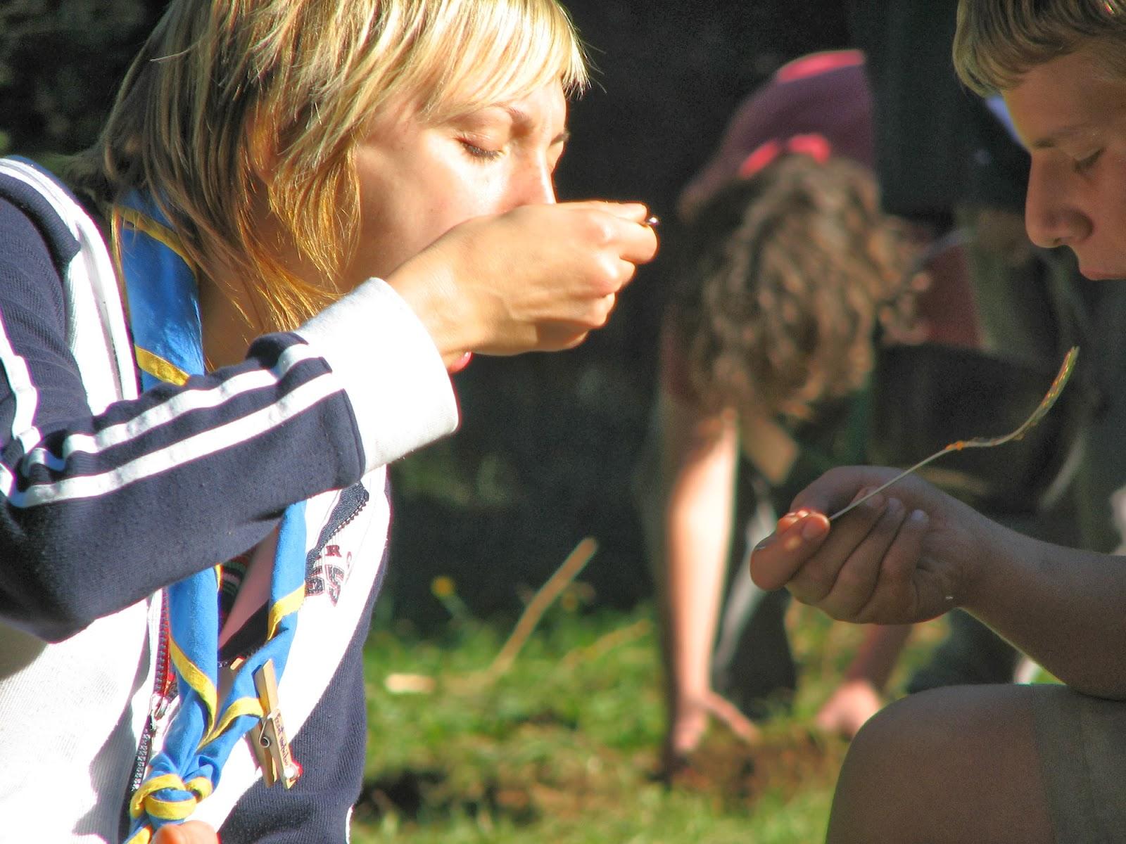 Vodov izlet, Ilirska Bistrica 2005 - Picture%2B211.jpg