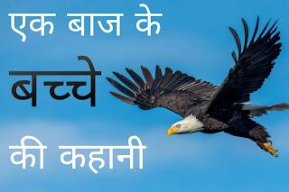 एक बाज के बच्चे की कहानी - Story of an eagle's child