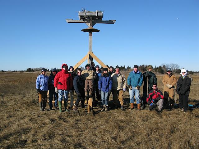 Osprey Platform - Jan 15, 2012 - IMG_8632.JPG