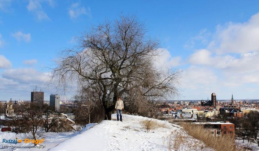 wzgórza fortyfikacyjne w Gdańsku