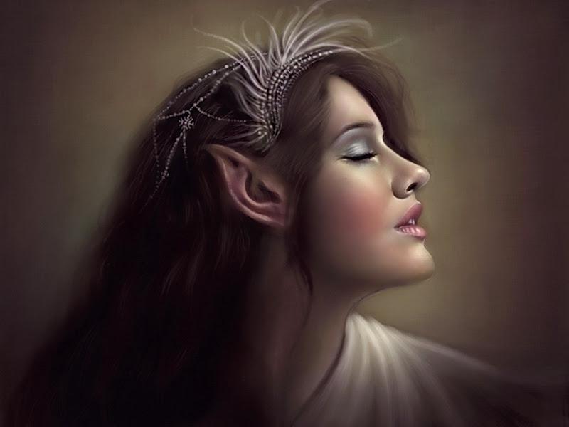 Dream Of Elven Princess, Fairies 1