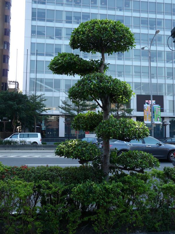 TAIWAN.Taipei Avant la nouvelle année - dimamche%2B18%2Bjanvier%2B061.jpg