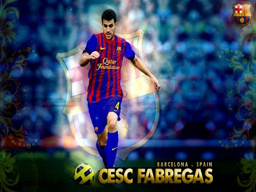 cesc fabregas photo