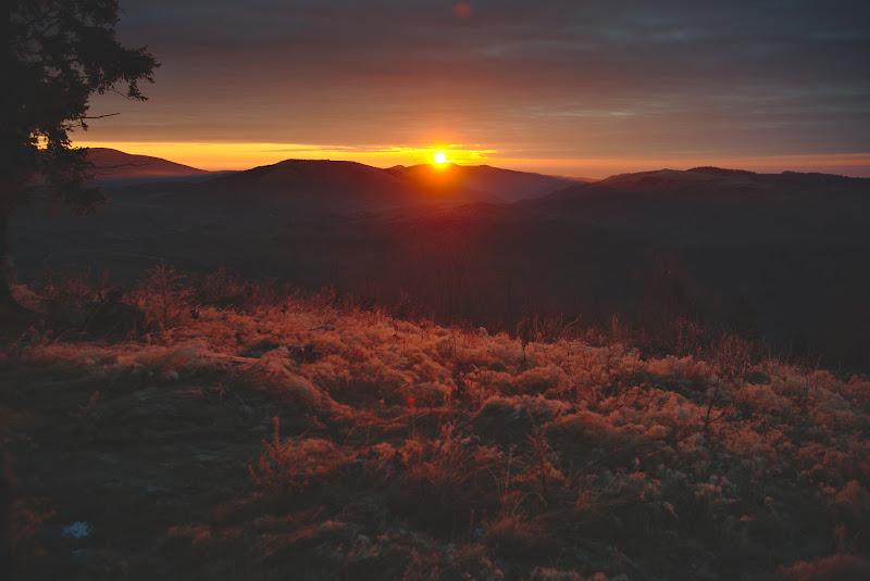 Rasaritul zilei cu tot cu bruma lasata peste noapte si cu fereastra de 5 minute inainte ca soarele sa intre din nou in nori.
