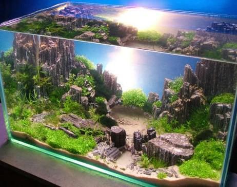 Aquascape Design aquascape aquarium design - android apps on google play