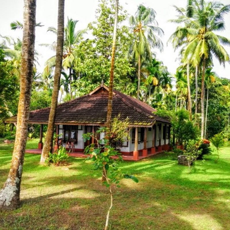 Monsoon Holidays In Kerala: Gramam Homestay: Blissful Kerala Backwater Paradise Near