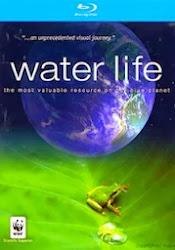 Water Life - Cuộc sống dưới nước
